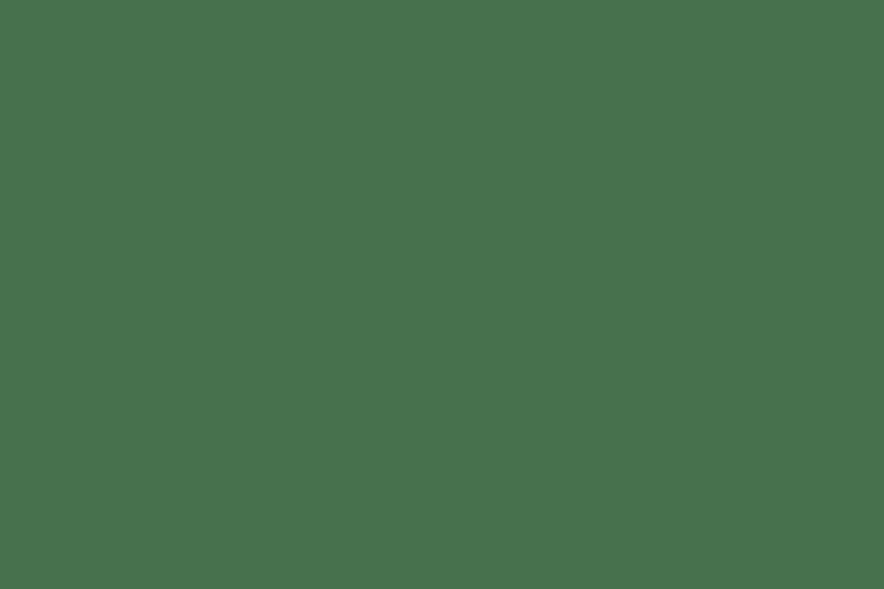 ba4dfd9dd81 Bags, Handbags & Shoulder bags   mywalit NZ - Penard Distribution